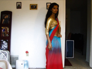 North Indian Bhabhi In Sari - Movies.